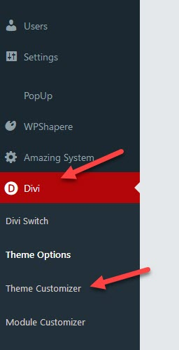 download your Divi Theme Customizer Settings